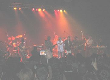 Koncert grupe Bijelo Dugme, Chicago, Novembar 2006.